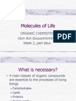 week 2 molecules of life ws