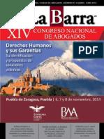 91 Barra de abogados.pdf