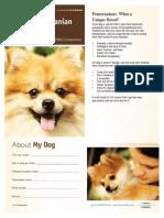 Pomeranian Electronic Handout_PDF