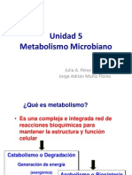 Unidad 5 Metabolismo Microbiano 2014-2