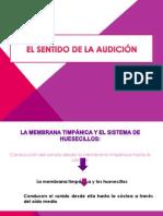 Expo Sentido de La Audicion 2014