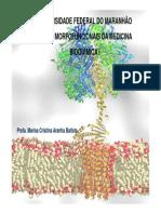 Aula 1 - Introdução a bioquímica.pdf