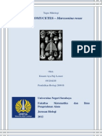 Makalah Deuteeromycetes - Marssonina Rosae