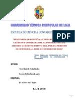 guia de auditoria 1.pdf
