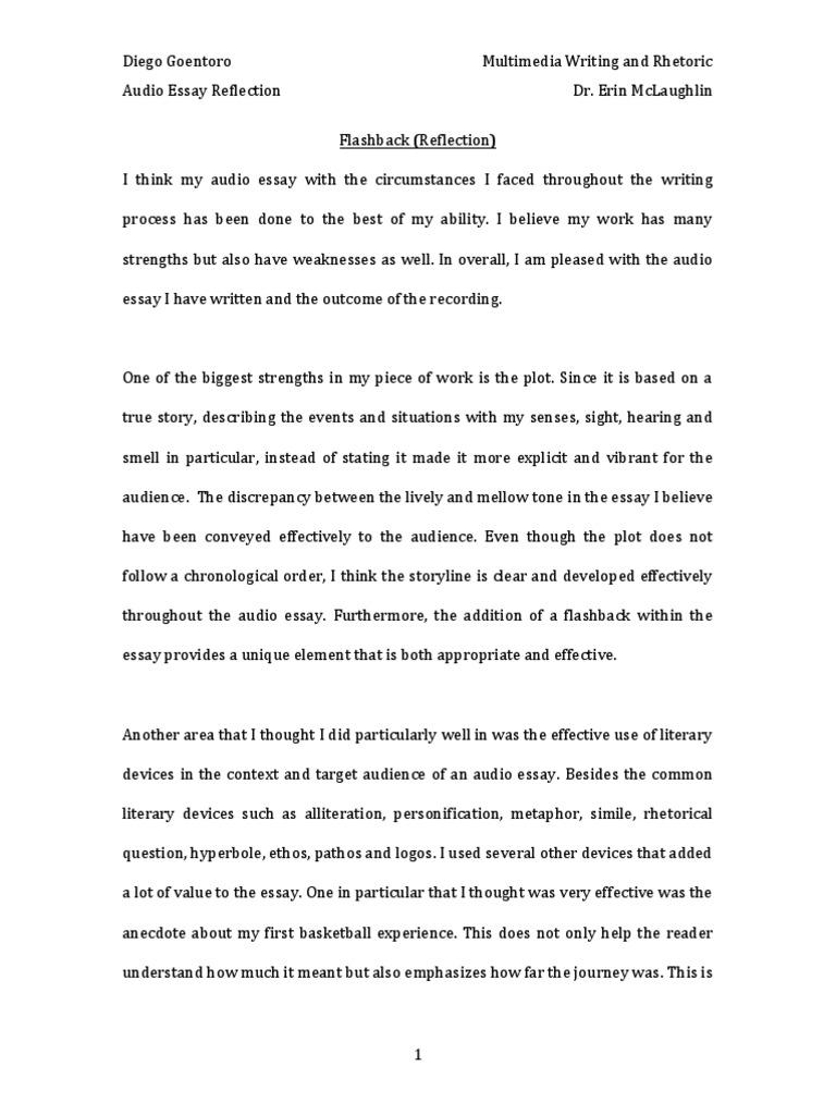 Essay On Bridges  Essay On Philosophy Of Education also Discussion Essay Example Diego Goentoro   Essays  Metaphor Common Sense Essay
