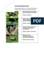 Guia Planificacion biodiversidad UCM PCM