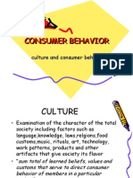 Effect of Culture on Consumer Behavior