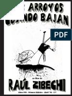 Los Arroyos Cuando Bajan - Zibechi