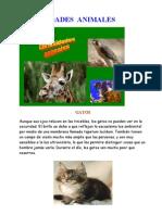 CURIOSIDADES  ANIMALES