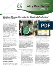 Tropical Marine Microalgae for Biodiesel Production