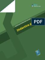 Indice Didactica General - Feldman Daniel