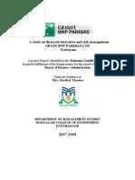 Derivatives Final Project
