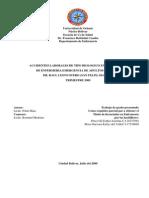 ACCIDENTES LABORALES DE TIPO BIOLOGICO EN EL PERSONAL DE ENFERMERIA.EMERGENCIA DE ADULTOS HOSPITAL DR. RAUL LEONI OTERO (SAN FELIX) SEGUNDO TRIMESTRE 2009