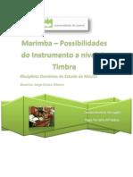 Marimba - Possibilidades Do Instrumento a Nível de Timbre