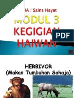 kegigianhaiwan-130204210459-phpapp02