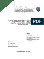 INFORMACIÓN SOBRE PROCEDIMIENTOS ENVIOLENCIA CONTRA LA MUJER