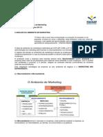 2 Analise do ambiente de marketing.pdf