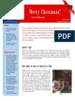 Herman Christmas 2014