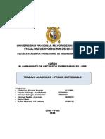 Informe ERP 2014 II