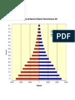 Piramide de Poblacion 2001 HONDURAS