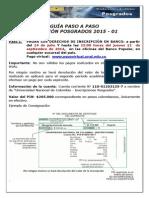 Guía Paso a Paso 2015-01