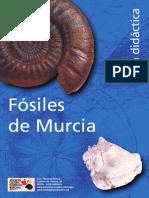 Guia didactica Murcia