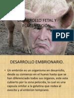 DESARROLLO FETAL Y PLACENTACIÓN DE CERDOS.pptx