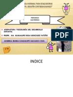 INDICE.pptx