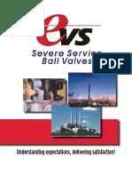 Virgo Evs Valve Brochure