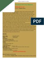 BUDIDAYA TANAMAN PUCUK MERAH.pdf