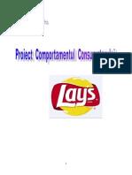 Comportamentul Consumatorului - Chipsuri Lays