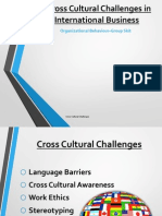 Presentation on Cross Cultural Challenges in International Business