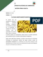 Platano genéticamente modificado