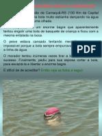 História de Pescador (Essa é Verdadeira)