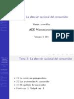 La Eleccion Racional Del Consumidor Breve2011