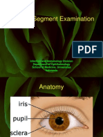 Anterior Segment Examination