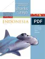 Mn124 Economically Important Sharks and Rays Indo 16983