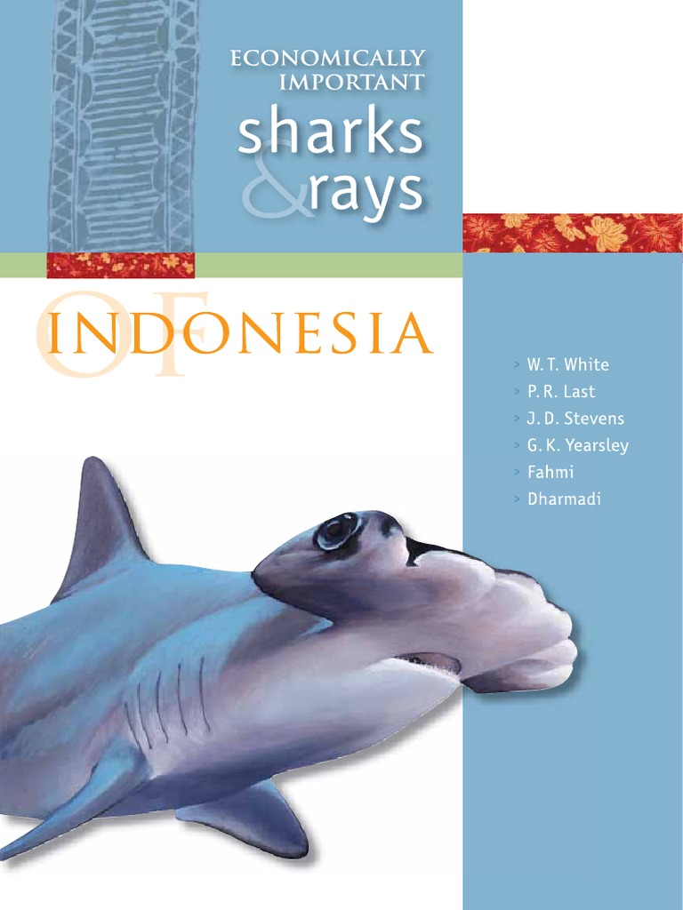 Mn124 Economically Important Sharks And Rays Indo