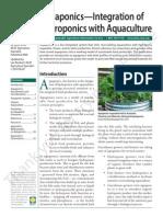 Hydroponics With Aquaculture Copy