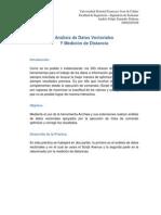 Análisis de Datos Vectoriales  Y Medición de Distancia