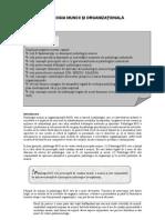 Psihologia Muncii Si Organizational A
