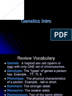 genetics intro