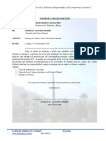 Informe Romulo 001