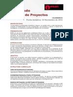Dip Gestión de Proyectos Folleto 20.04.13