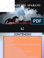 GENERALIDADES ANATOICAS DEL APARATO DIGESTIVO.ppt