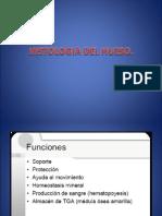 Histologia Del Hueso