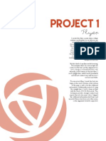 Project 1, Flyer