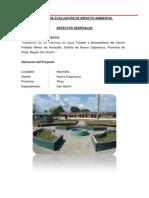 Evaluacion de Impacto Ambiental en La Localidad de Naranjillo