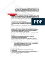 ANATOMIA PATOLOGICA DE GENITALES MASCULINOS, CLASE PROPIA