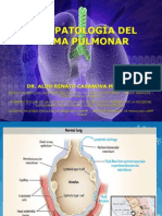Fisiopatología Del Edema Pulmonar Dr. Casanova 2014